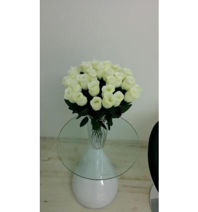 ורד לבן