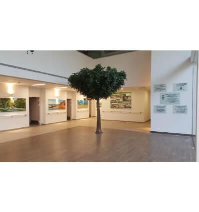 עץ שיננטוס מפלסטיק