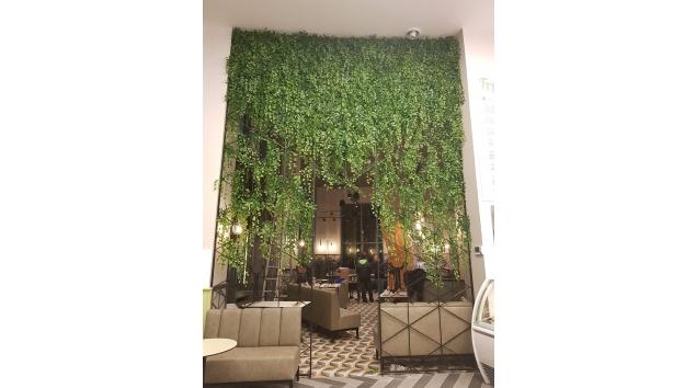 קיר ירוק מעוצב מבית סחלבים