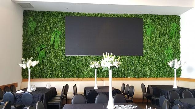 קיר ירוק- סחלבים