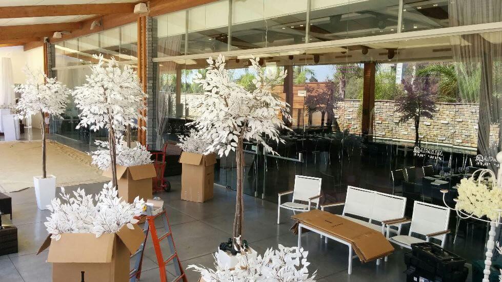 הכנות עץ לבן לאירוע
