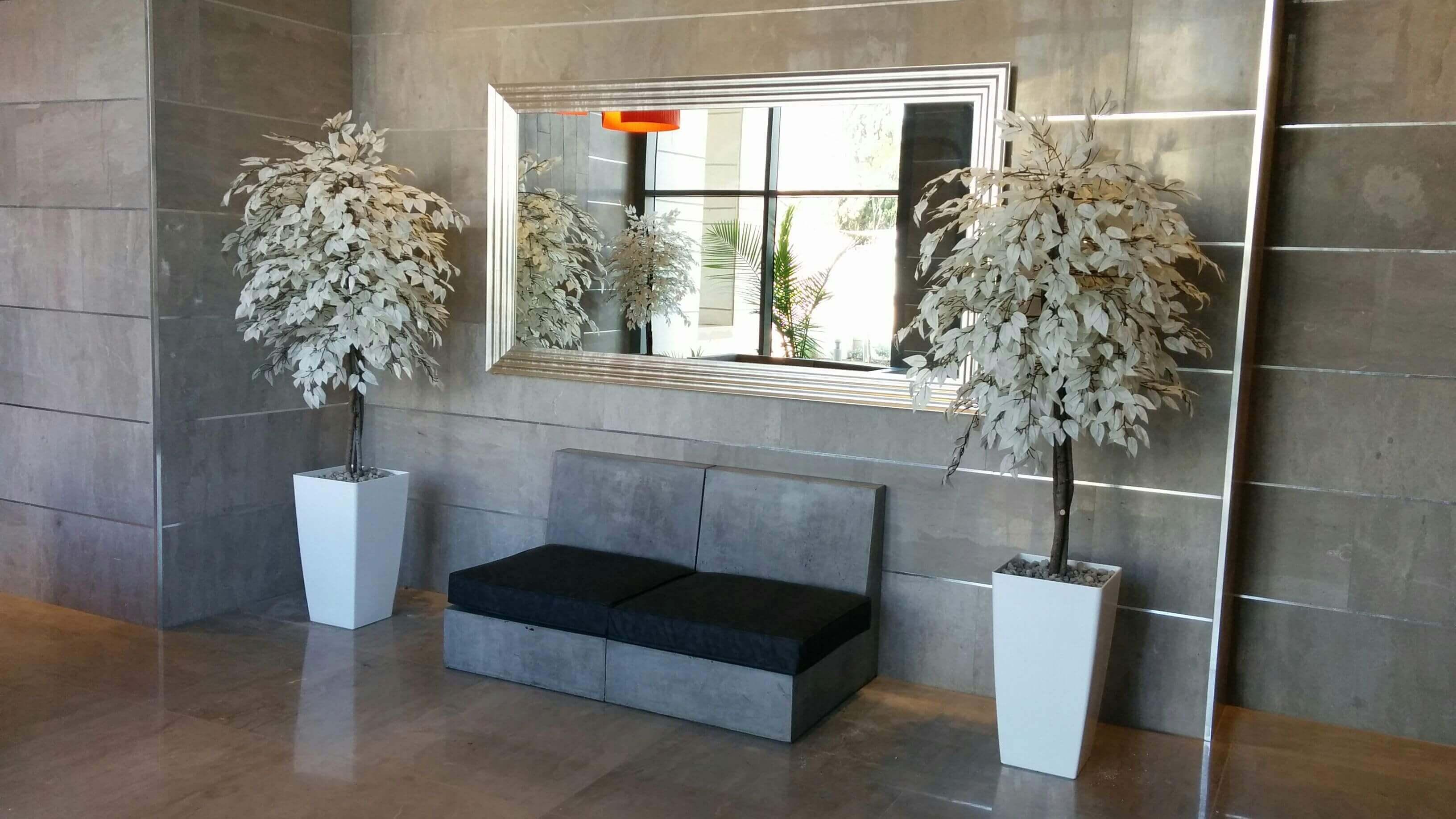 עיצוב לובי על ידי עצים לבנים בהוד השרון
